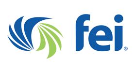 financial executives international logo
